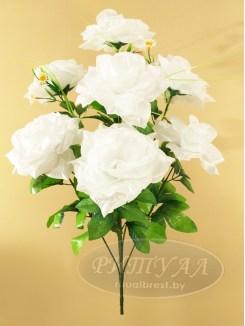 Роза БОНА