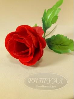 Роза бутон бархат