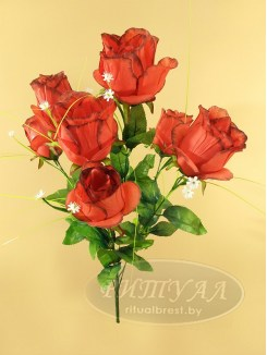 Роза бутон АЛЬБА-20