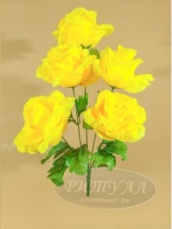 Роза НИЦЦА