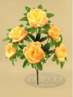 Роза ЭЛИАНА-20