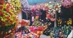 Павильон «Ритуал»Юбилейный рынок (справа от «АЛМИ»)